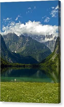 Alpine Meadow Canvas Print by Frank Tschakert