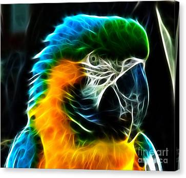 Amazing Parrot Portrait Canvas Print by Pamela Johnson