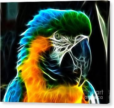 Amazing Parrot Portrait Canvas Print by Pamela Johnson