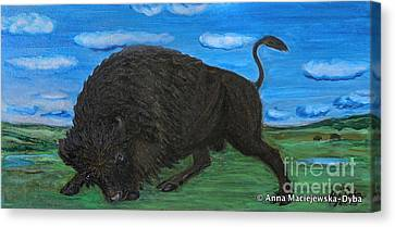 American Bison Canvas Print by Anna Folkartanna Maciejewska-Dyba
