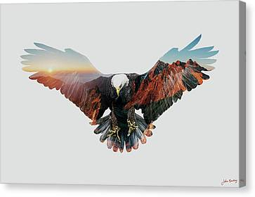 American Eagle Canvas Print by John Beckley