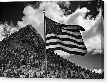American Flag Bailey Co Canvas Print by Mark Courage