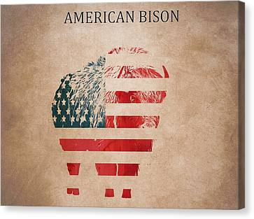 American Mammal The Bison Canvas Print by Dan Sproul