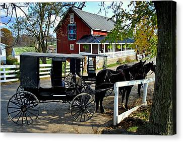 Amish Country Horse And Buggy Canvas Print by Frozen in Time Fine Art Photography