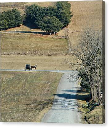 Amish Horse And Buggy On A Country Road Canvas Print by Dan Sproul