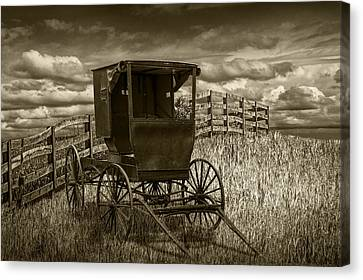 Amish Horse Buggy In Sepia Tone Canvas Print by Randall Nyhof
