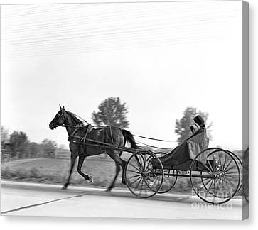 Amish In Horse-drawn Buggy, C.1930s Canvas Print by H. Armstrong Roberts/ClassicStock