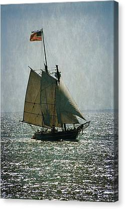 Amistad Canvas Print by Karol Livote