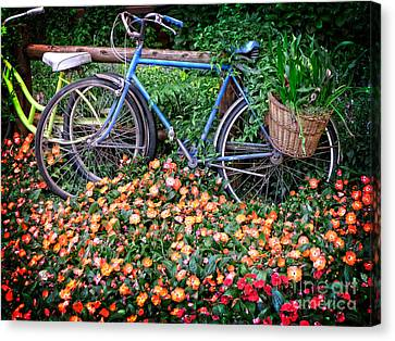 Among The Flowers Canvas Print by Edward Fielding
