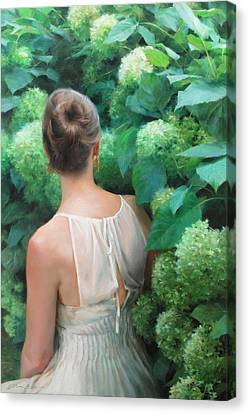 Among The Hydrangeas Canvas Print by Anna Rose Bain