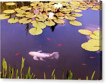 Among The Lilies Canvas Print by Jan Amiss Photography
