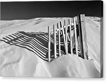 Amoreira Shadows Canvas Print by John McKinlay