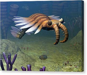 An Anomalocaris Explores A Middle Canvas Print by Walter Myers