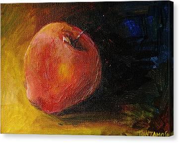 An Apple - A Solitude Canvas Print by Jun Jamosmos