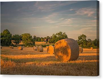 An Evening Amongst The Hay Canvas Print by Chris Fletcher