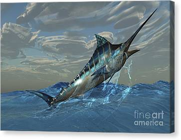 An Iridescent Blue Marlin Bursts Canvas Print by Corey Ford