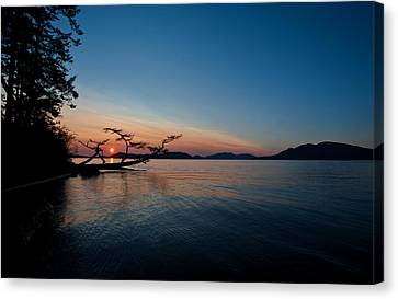 Anacortes Vision Canvas Print by Mike Reid