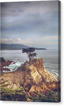 And Yet Here I Still Stand Canvas Print by Laurie Search