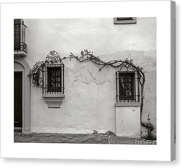 Andalucia Wall Canvas Print by Thomas Marchessault