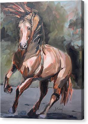 Andalusian Stallion Canvas Print by Donna Tuten