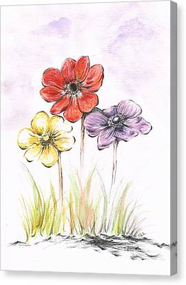Anemone Flowers Canvas Print by Teresa White