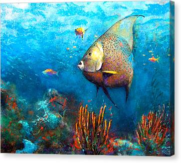 Angel Fish Canvas Print by Andrew King