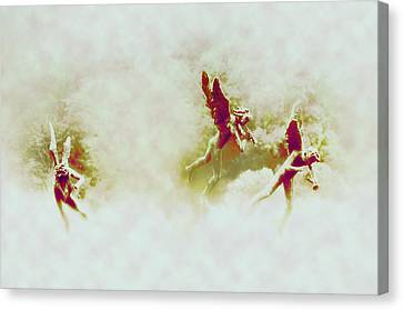 Angel Song Canvas Print by Bill Cannon