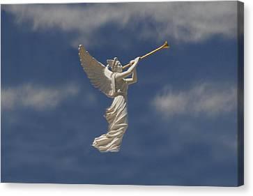 Angels Trumpet Canvas Print by David Lee Thompson