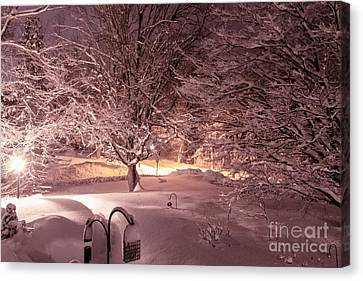 Another Snow Storm Canvas Print by Claudia M Photography
