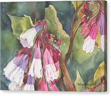Antebellum Canvas Print by Casey Rasmussen White