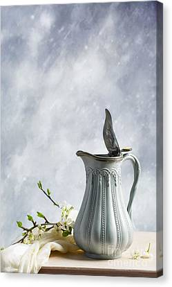 Antique Jug Canvas Print by Amanda And Christopher Elwell
