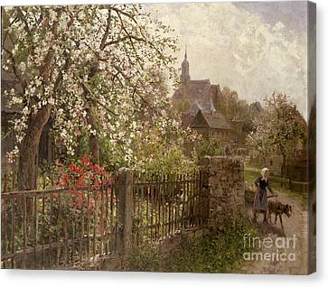 Apple Blossom Canvas Print by Alfred Muhlig