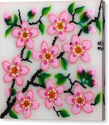 Apple Flower Canvas Print by Gabriela Stavar