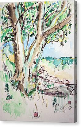 Apple Tree Canvas Print by Rhonda Alexander