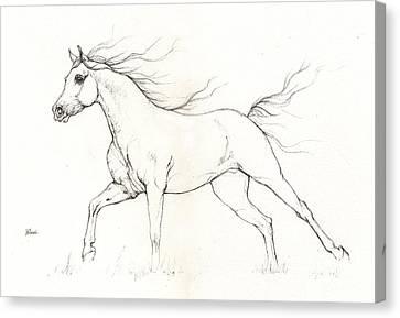 Running Horses Canvas Print featuring the drawing Arabian Horse Drawing 2015 12 20 by Angel Tarantella