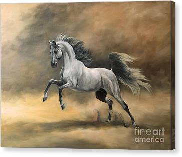 Arabian Canvas Print by Jeanne Newton Schoborg