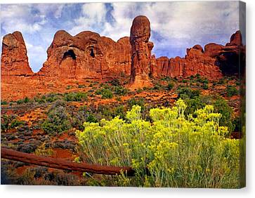 Arches Landsape 2 Canvas Print by Marty Koch