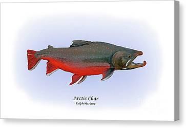 Arctic Charr Canvas Print by Ralph Martens