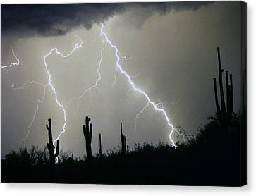Arizona Desert Storm Canvas Print by James BO  Insogna
