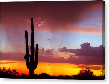Arizona Lightning Sunset Canvas Print by James BO  Insogna