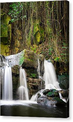 Armes Waterfall II Canvas Print by Marco Oliveira