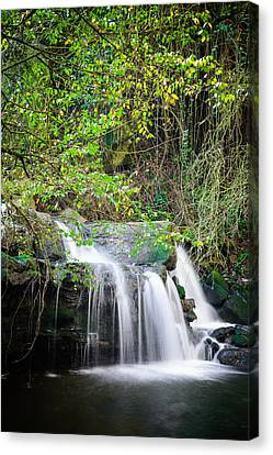 Armes Waterfall Canvas Print by Marco Oliveira