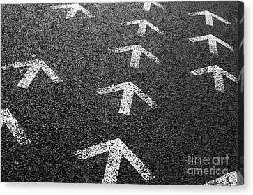 Arrows On Asphalt Canvas Print by Carlos Caetano