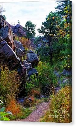 Arthur's Rock Trail Canvas Print by Jon Burch Photography