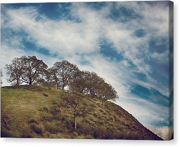 As High As Souls Can Fly Canvas Print by Laurie Search