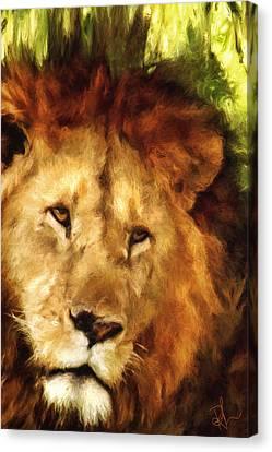 Aslan Canvas Print by Pennie  McCracken