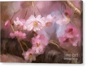 At First Blush Canvas Print by Lois Bryan