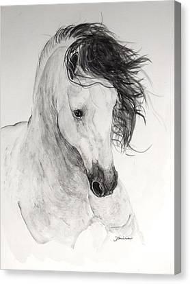 Atinado II Canvas Print by Janina  Suuronen