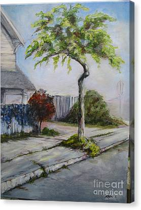 Atree Grows In Eureka Canvas Print by Patricia Kanzler