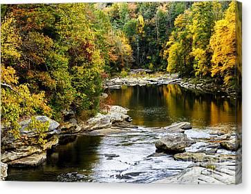 Audra's Autumn Splendor Canvas Print by Thomas R Fletcher